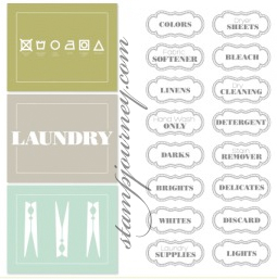 MDS_Downloads_012213_LaundryList
